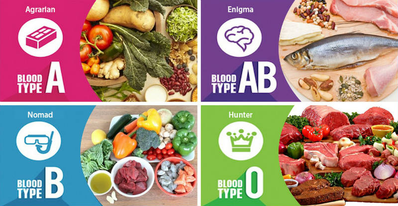 The blood group diet