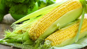 Corn - weight loss diet